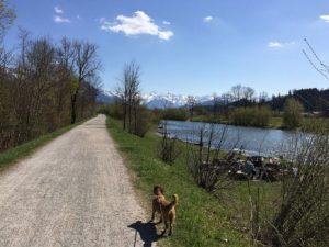 Alpen östlich der Iller